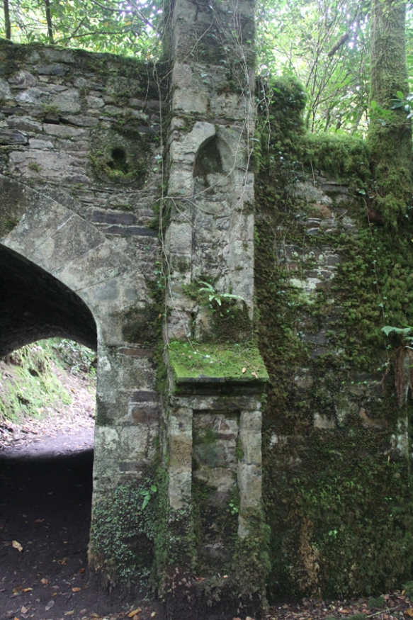 Ireland254