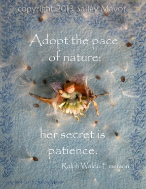 print - Adopt the pace