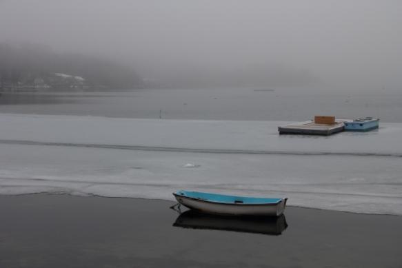 fog2014