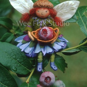 Blueberry Fairy note card