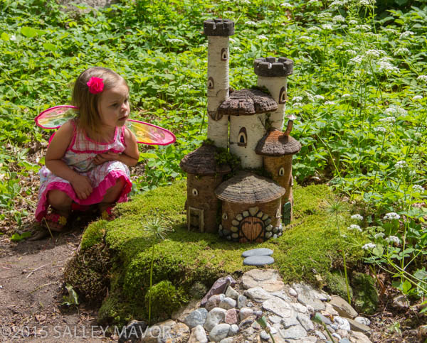 FairyHouses-1-13