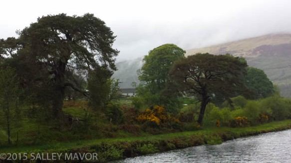 Scotlandlandscape-1-11