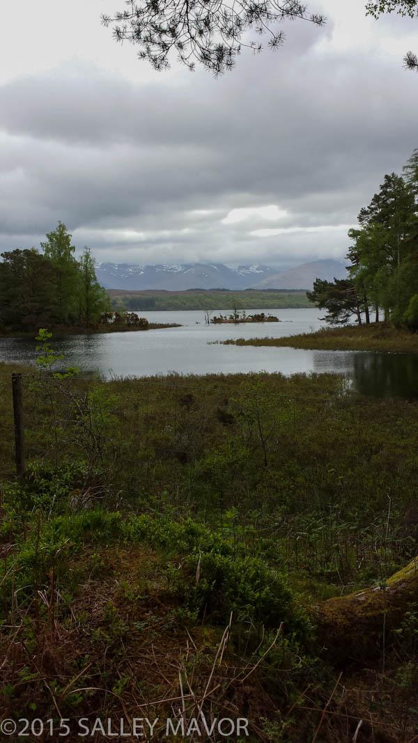 Scotlandlandscape-1-14