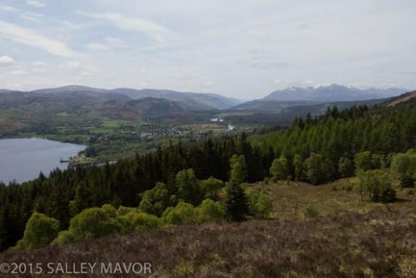 Scotlandlandscape-1-7