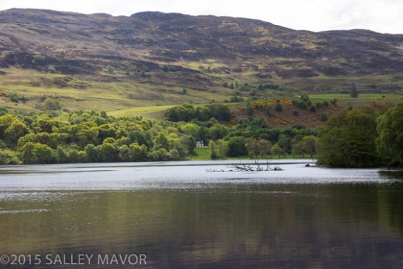 Scotlandlandscape-1